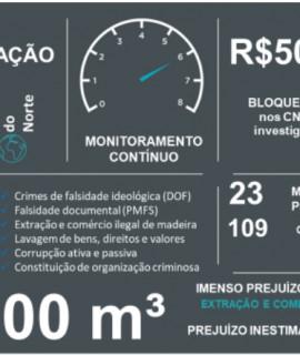 Avanços tecnológicos permitem o monitoramento diário para combate ao desmatamento ilegal