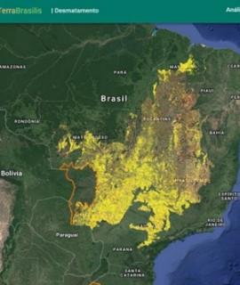 Prevenção de incêndios florestais e monitoramento ambiental em destaque no MundoGEO Connect