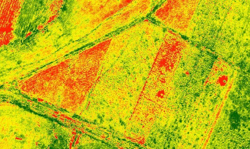 Curso Processamento de Imagens de Drones no DroneShow e MundoGEO Connect 100% Online em setembro